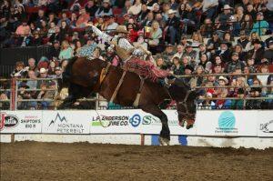 roughstock rodeo broncs